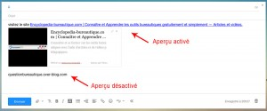 L'aperçu de site web est désactiver pour la deuxième adresse web