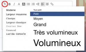 Icone choix de la taille du texte