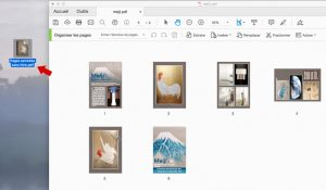 Fichier pdf des pages extraites sur le Finder